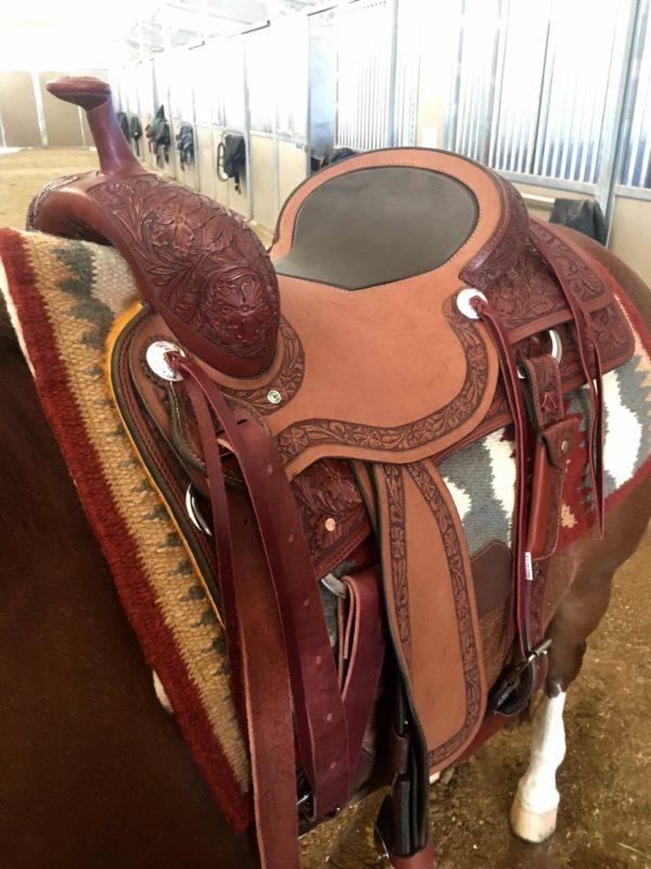 al-dunning-sheridan-working-cow-horse-saddle-3