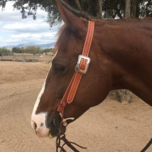 MC Leather Diamond Slide Ear Headstall