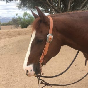 MC Leather Plain Split Ear Headstall